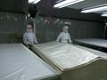 EVA膠膜包裝珍珠紙 3