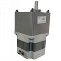 BLDC - Brushless DC  Motor (Dense