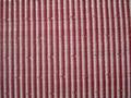 Horse Hair Fabric-9 1