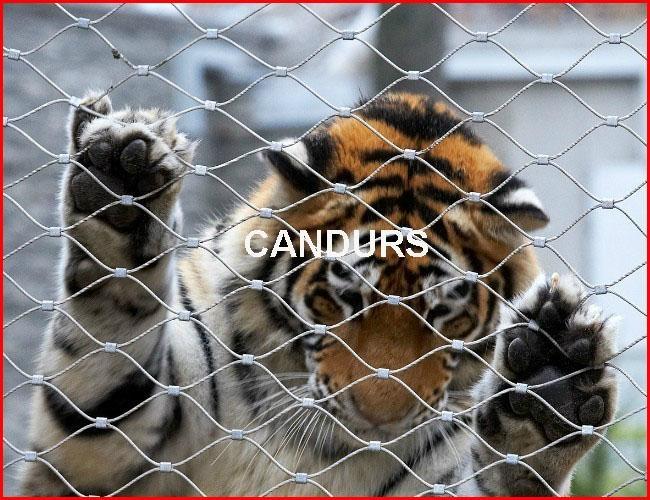 動物扣網-動物圍欄網 1