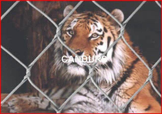 动物围网-不锈钢动物围网 1