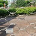 不锈钢丝绳扣网 9