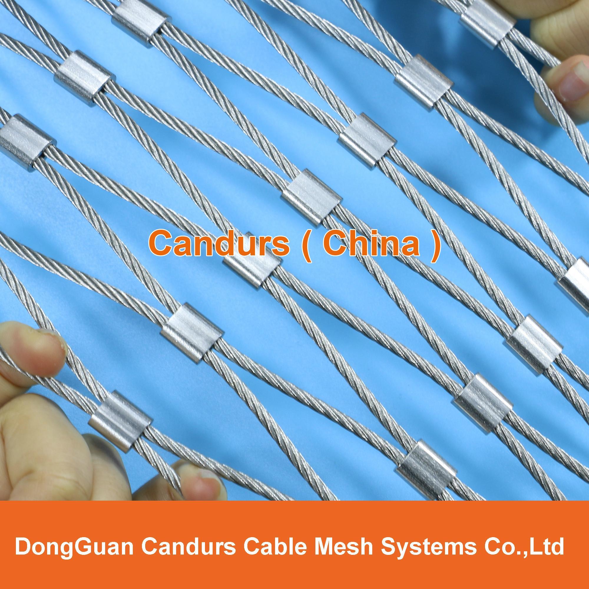 动物园专用不锈钢丝绳套环网   7