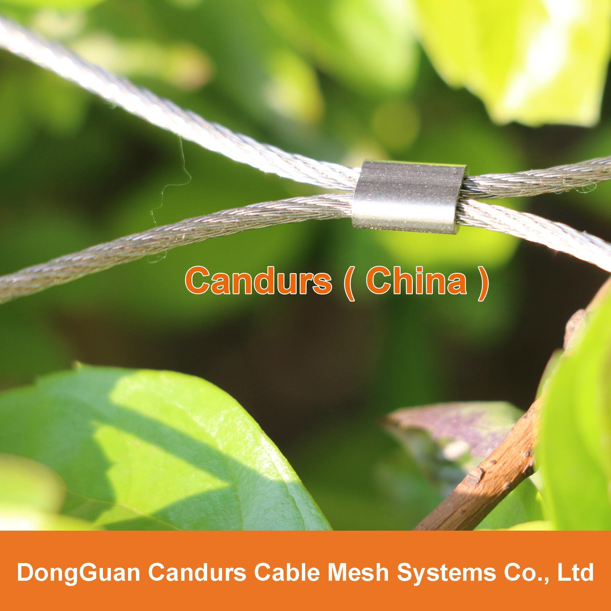 动物园专用不锈钢丝绳套环网   2