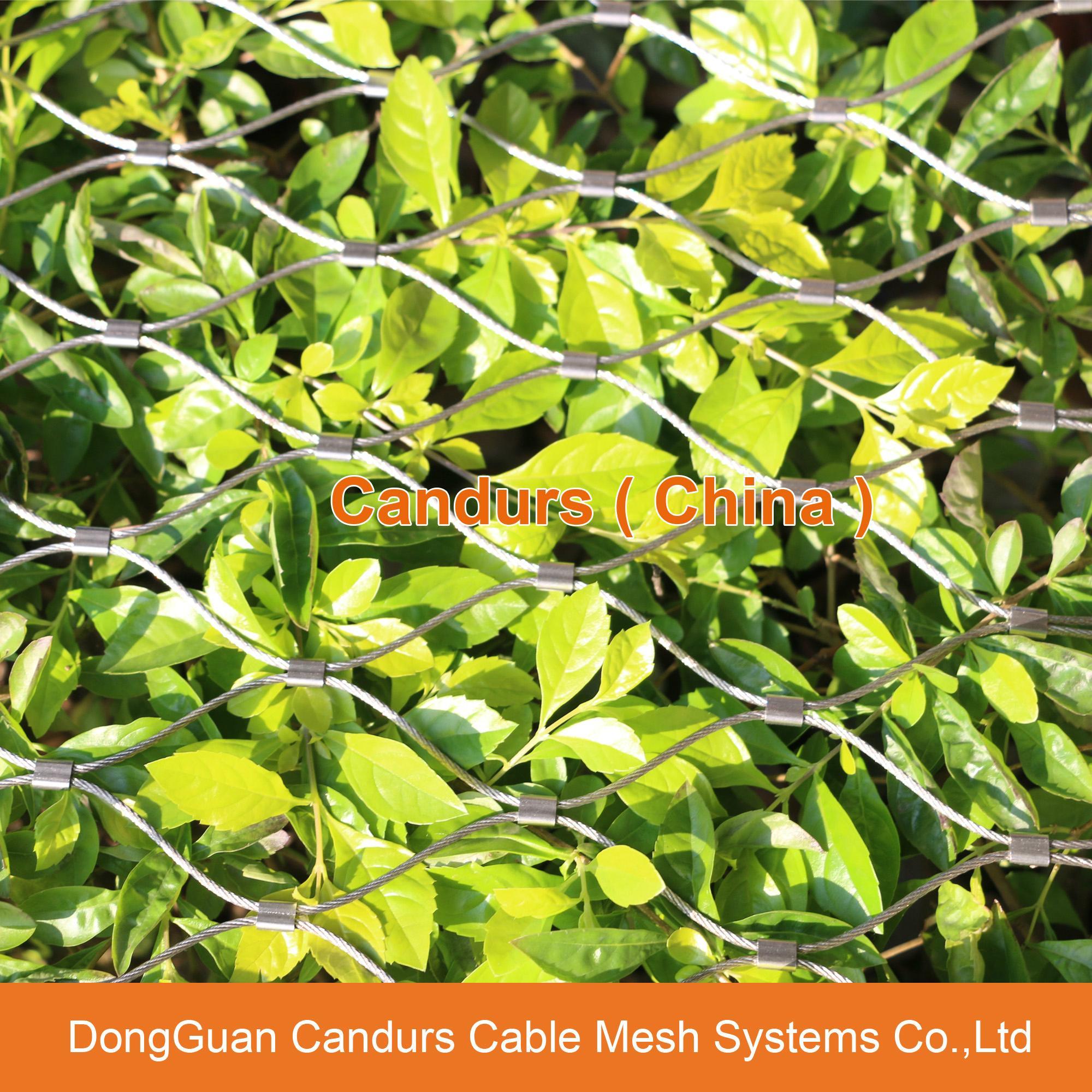 不锈钢绳建筑柔性防护网 17