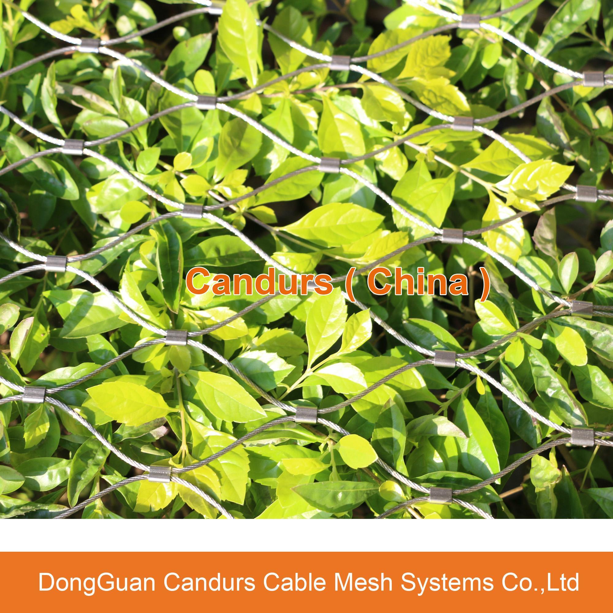 外牆裝飾綠化網 17