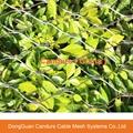 不鏽鋼裝飾綠植攀爬網 17