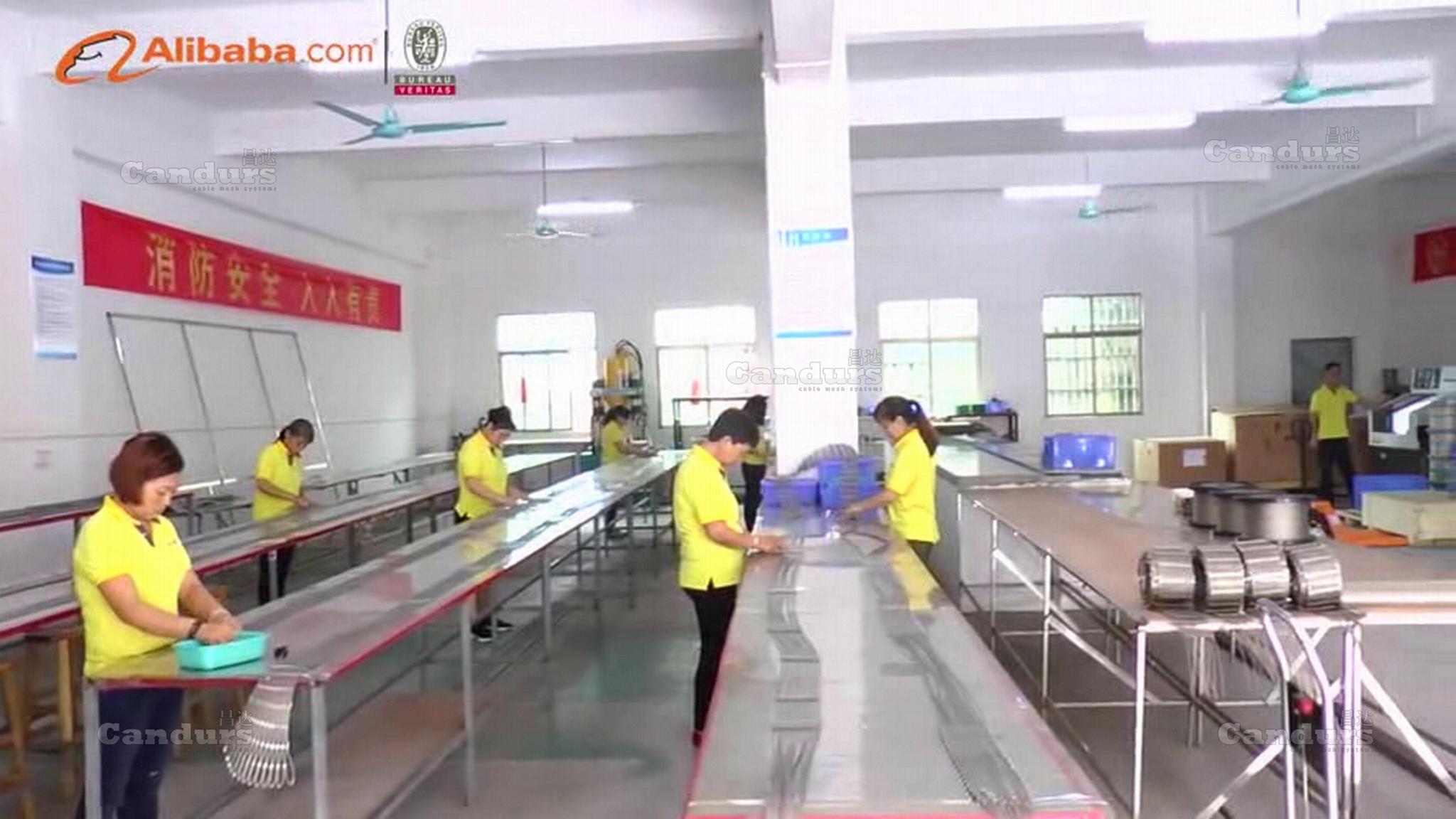 Candurs(China)