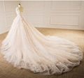 Sleeveless V-neck Bridal Dresses Lace Tulle Champagne Custom Wedding Gown E229 2