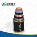 低壓電力電纜 2