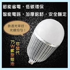 LED50W大功率球泡燈E40