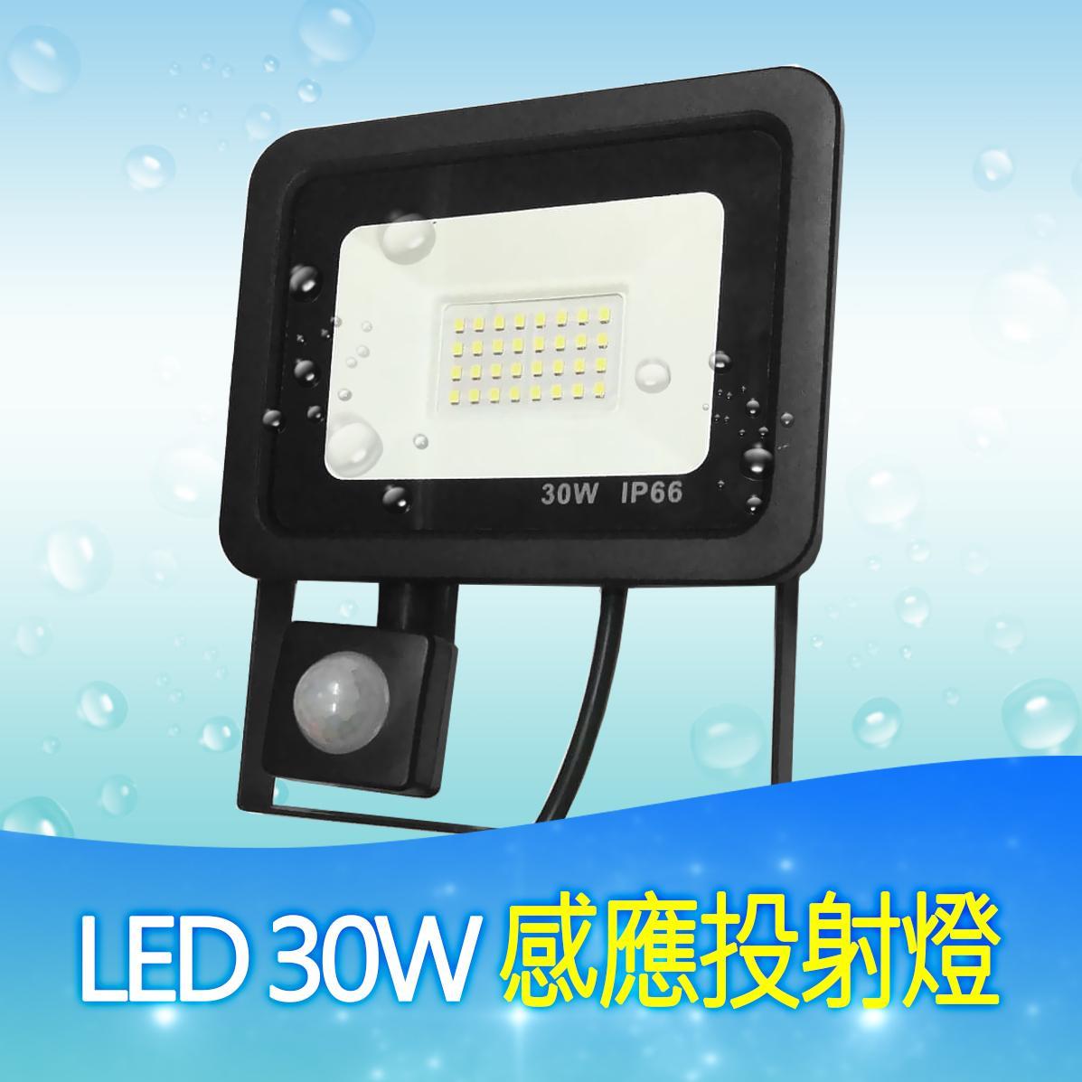 LED 30W 感应投射灯 1