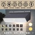 【太陽能】LED太陽能雙色景觀