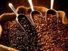 意大利咖啡豆(AA級)