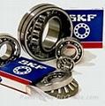 瑞典SKF軸承