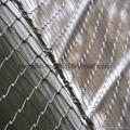 SS304不锈钢动物园围网