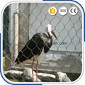 動物園專用鋼絲繩圍網 3