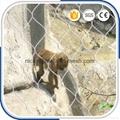 動物園專用鋼絲繩圍網 4