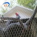 SS304不锈钢动物园围网 2