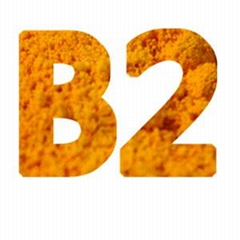 Riboflavin Vitamin B2