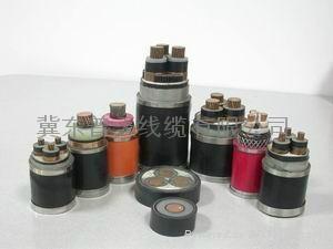 唐山普天電話電纜HYA53 HYA22 1