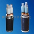 唐山普天電話電纜HYA53 HYA22 4