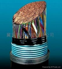 铜芯市内通信电缆