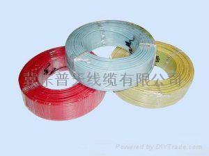 軟電線電纜RVVRVS 1