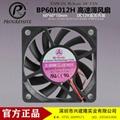 Bi-sonic百瑞BP601