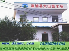 漳浦县大山苗木场