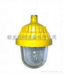 供應 防爆平臺燈