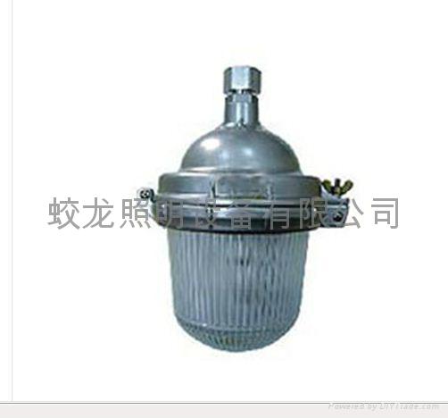 供應防眩頂燈 1