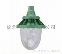 供應 防水防震氾光燈