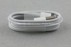 1M Lightning to USB Cabl