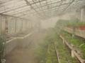 人造霧噴頭 4
