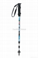 NORDIC WALKING POLE SM3-E5