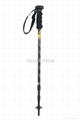 nordic walking pole with LED torch
