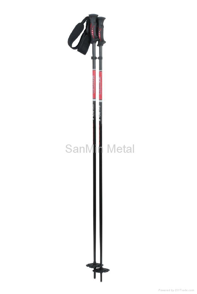 SKI POLE SM118-C1 3