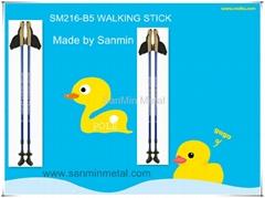 NORDIC WALKING POLE SM216-B5