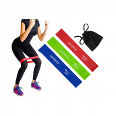 Exercise Loop Bands