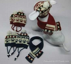 pet scarf and hats
