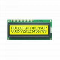 1602 LCD Module