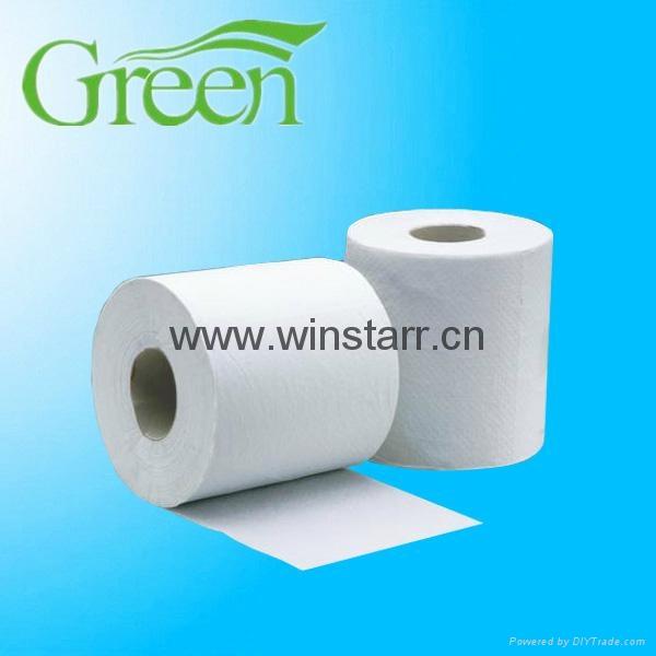 toilet roll 5