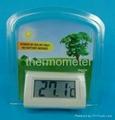 solar thermometer & Hygrometer  5