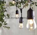 Garden String Light-E26 S14 Vintage