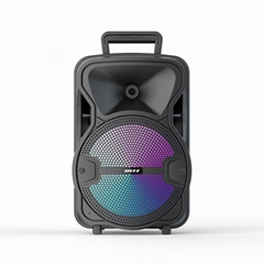 "8"" Home & outdoor wireless bluetooths portable karaoke speakers"