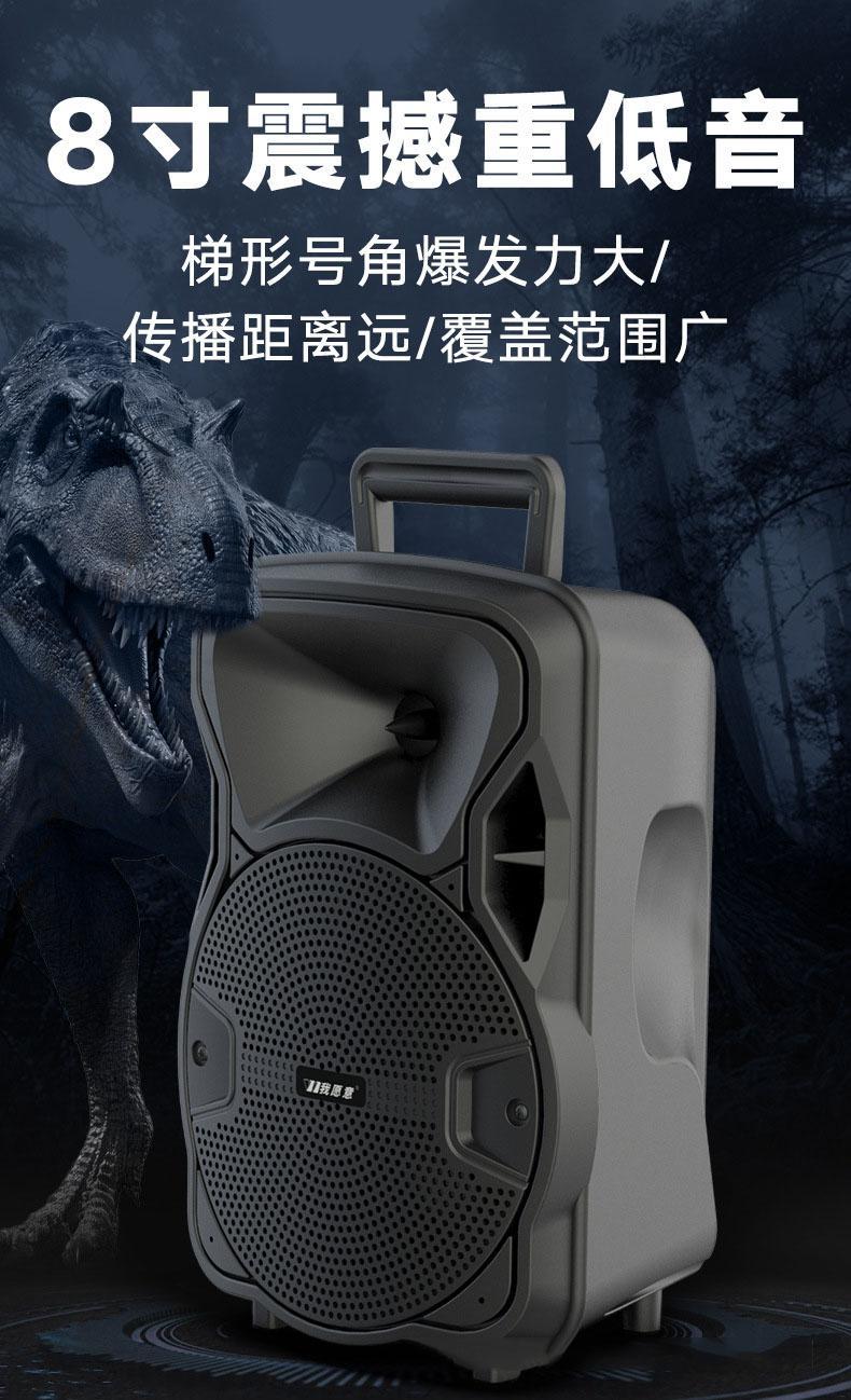 8寸帶無線麥克風手提式藍牙音箱 16