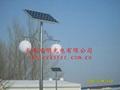 黑龍江太陽能路燈 4