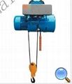 杭州变频钢丝绳电动葫芦