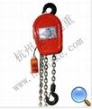 杭州DHS环链电动葫芦